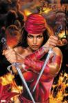 Marvel Comics Elektra Officially Licensed Poster