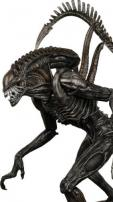 Alien vs Predator 2 Requiem Alien Warrior Figure by NECA.