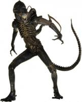 9 Inch Alien Warrior Figure by NECA.