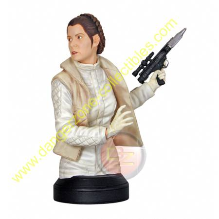 Star Wars Hoth Princess Leia Mini Bust by Gentle Giant.